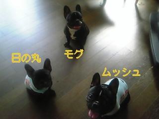 20050819040153.jpg