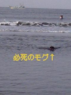 20050819040321.jpg