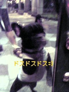 20050823101050.jpg