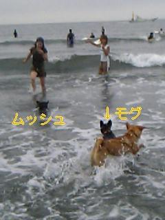 20050829103328.jpg