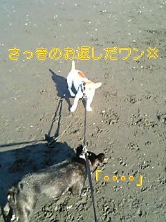 20050913093812.jpg