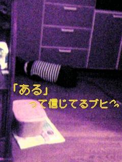 20050920141737.jpg
