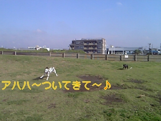 20051008113551.jpg