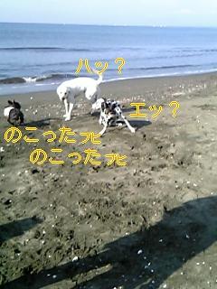 20051008113639.jpg