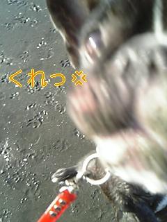 20051015101414.jpg