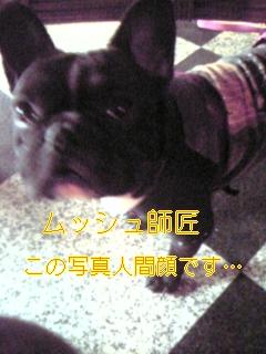 20051030084612.jpg