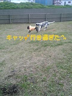 20051116073229.jpg