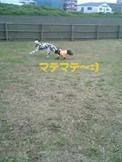 20051116073239.jpg