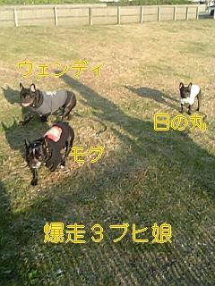 20051119084642.jpg