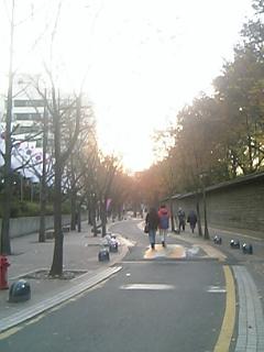 20051124083136.jpg