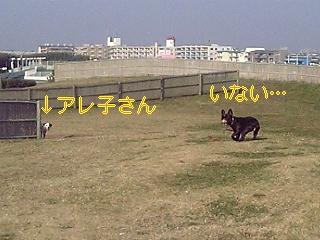 20051130140002.jpg