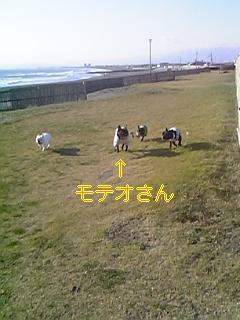 20051208102404.jpg