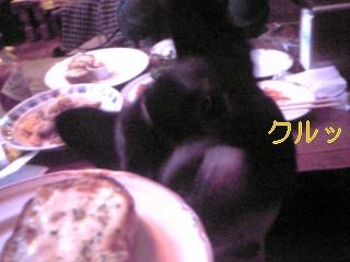 20060124141347.jpg