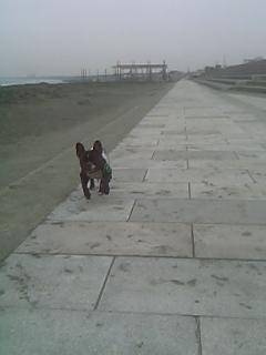 20060518064854.jpg