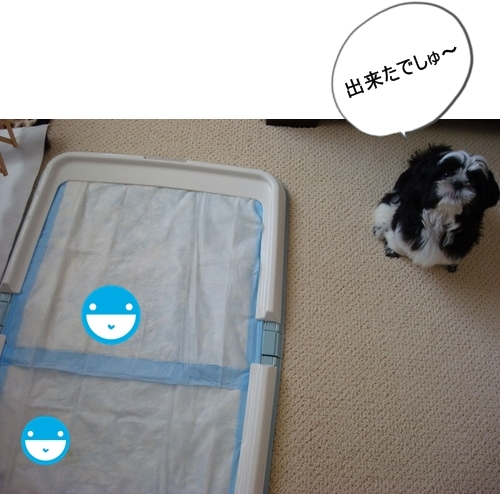 DSC04629moji.jpg