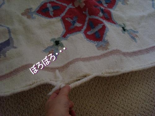 DSC04630moji.jpg