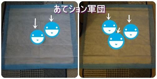 pageDSC04631x2moji.jpg