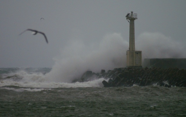 荒れる日本海-a