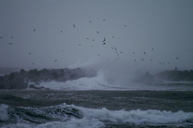 荒れる日本海-b