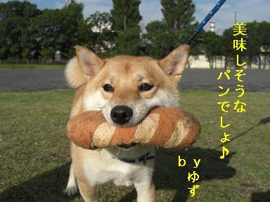 美味しそうパン
