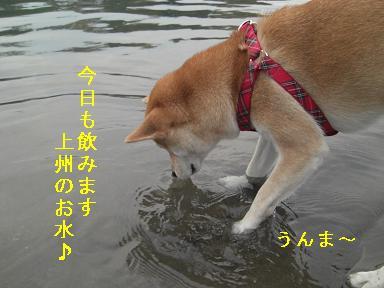 上州のお水