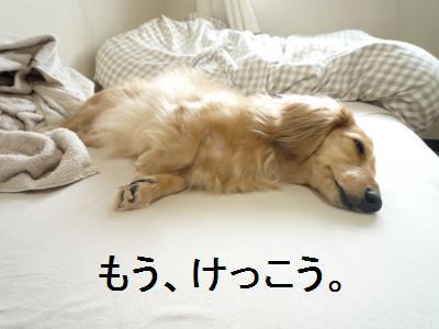 tukareta_20090927184502.jpg