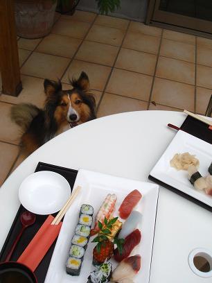 ワタシも魚好きですわん