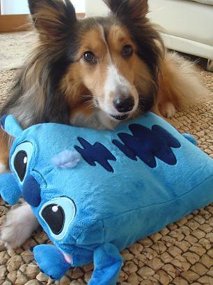 大きな枕です