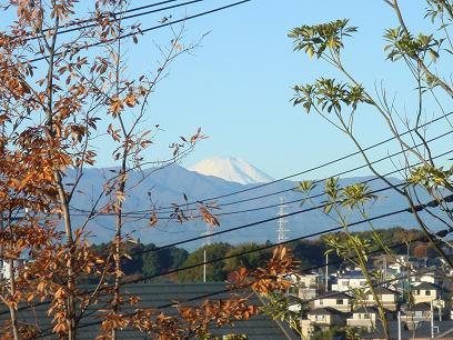 富士山が見えるぅ~