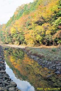 奈良県宇陀市28号線沿い室生寺周辺