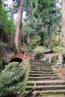 室生寺奥の道