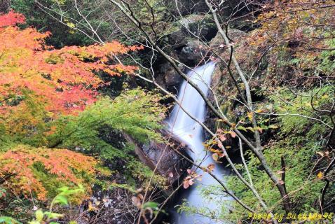 奈良県曽爾村長走りの滝