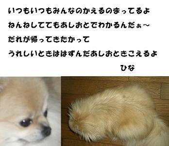 20070517224630.jpg