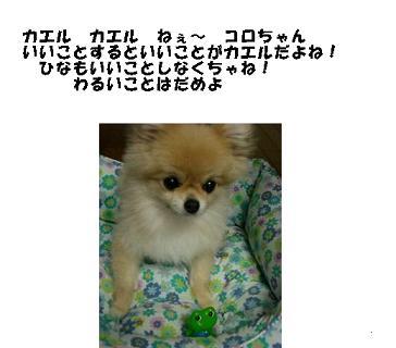20070713152359.jpg