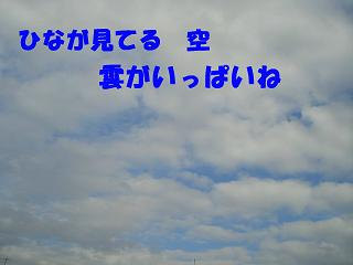 CIMG0919.jpg
