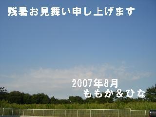CIMG1584.jpg