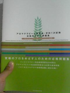 20080812224328