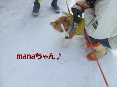 manaちゃん