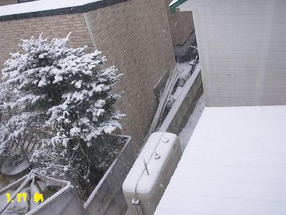 27日 朝の雪景色