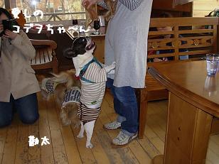 4.12ジプシー勘太