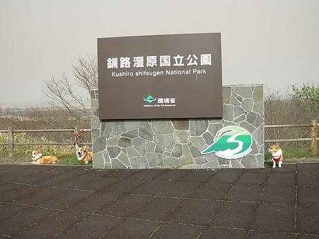 釧路湿原で