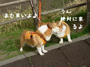 釧路湿原 紋兄&ミロン2