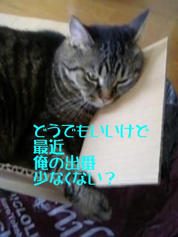 8・19 ヒソヒソ・・・
