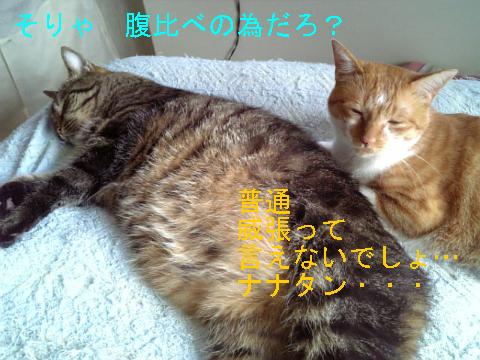 8・29 最強ナナ 4