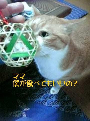 9・30 招き猫・・・ 3