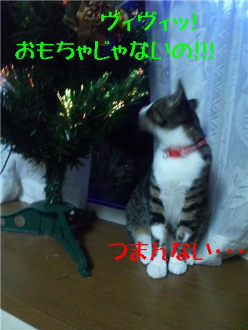 11・23 もうすぐクリスマス 4