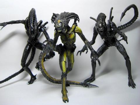 プレデリアン 008