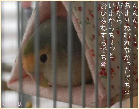 11G6twIcyU.jpg