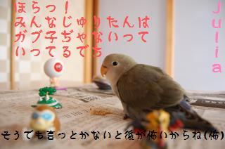 DSC_1883_convert_20090507163904.jpg