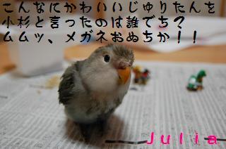 DSC_1995_convert_20090507164000.jpg